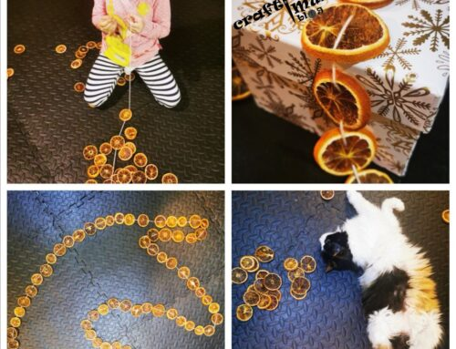 Dried orange slices garland